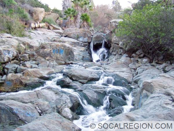 Adobe Falls near SDSU. These are on the north side of I-8 just west of College Avenue.