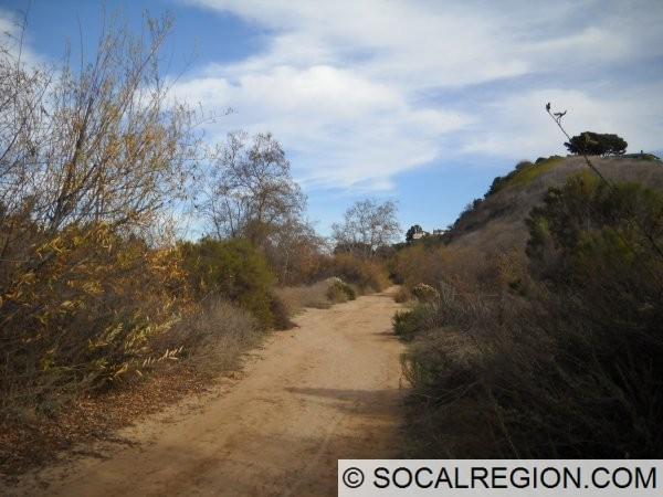 South trail, former railroad line.