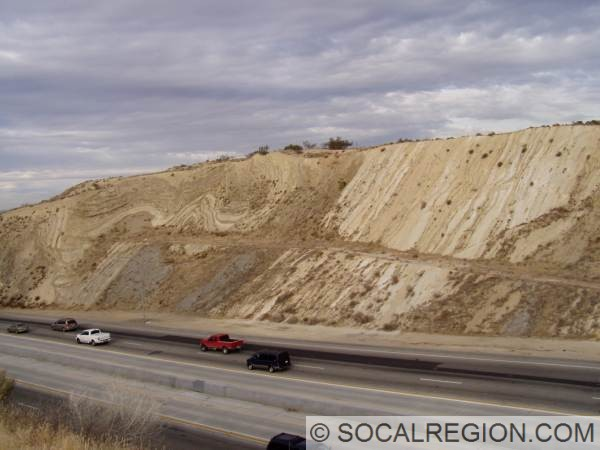 Folding caused by movement along the San Andreas at Avenue S on the SR-14 Freeway. Strata is the Pliocene Anaverde Formation, which is mostly comprised of weak shales and siltstones.