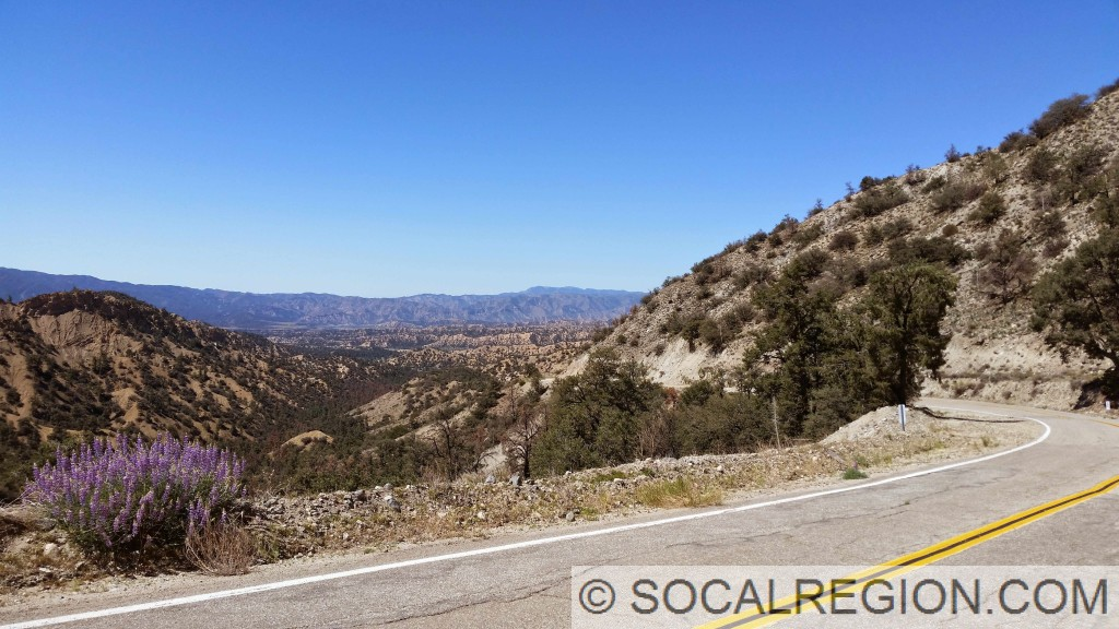 Looking toward Pine Mountain.