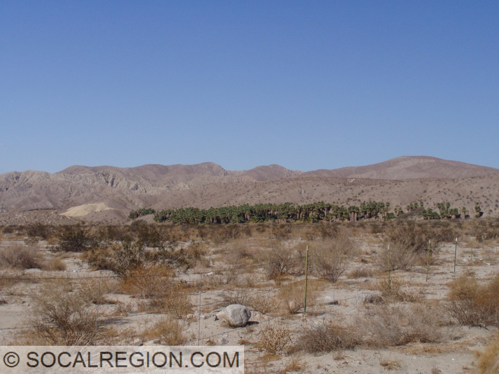 San Andreas Fault (Mission Creek Segment) near Indio, CA. Palm trees mark where springs have been formed along the fault line.