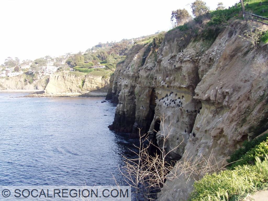 Sea caves at La Jolla.