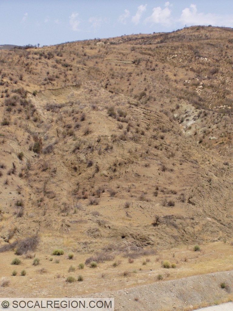 Small landslide in Piru Gorge within the Ridge Basin Group. Slides are very common in this formation.