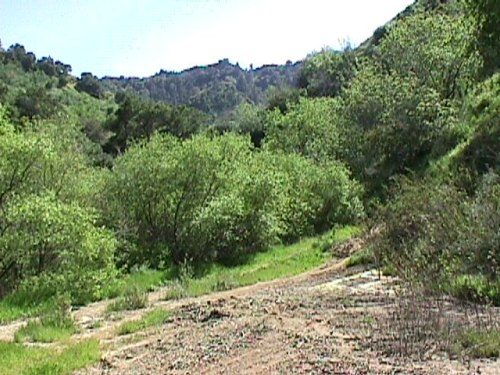 http://socalregion.com/wp-content/uploads/wiley_canyon_at_seep.jpg (67786 bytes)